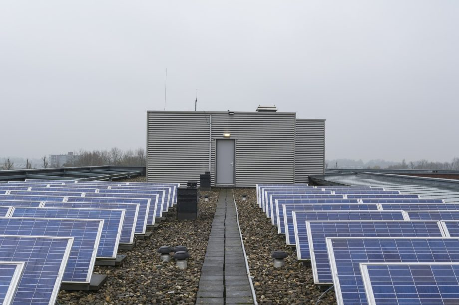 Solar Renewables