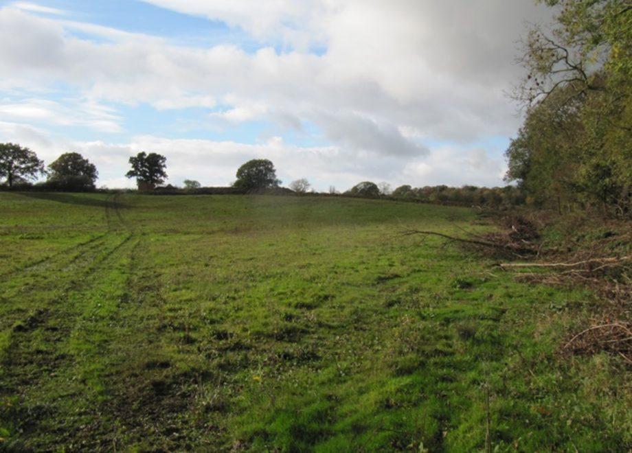 Newton Lane - Site Photo