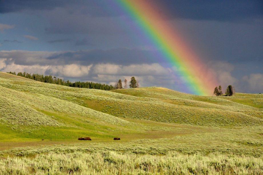Rainbow colour production